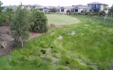 Kooindah Waters Resort community title subdivision wetland